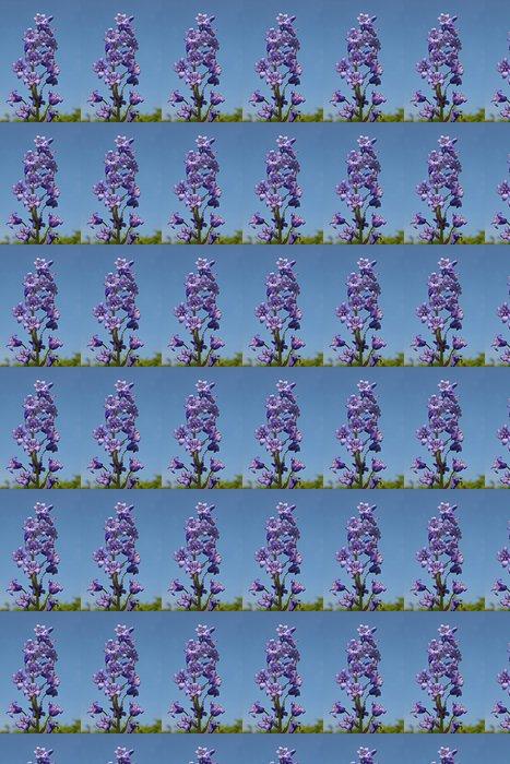 Vinylová Tapeta Hyacint - Květiny