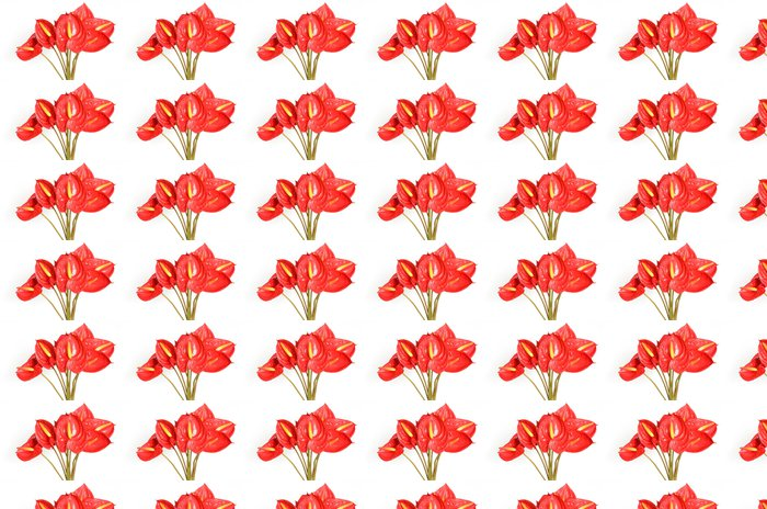 Vinylová Tapeta Červené anthurium květiny - Štěstí
