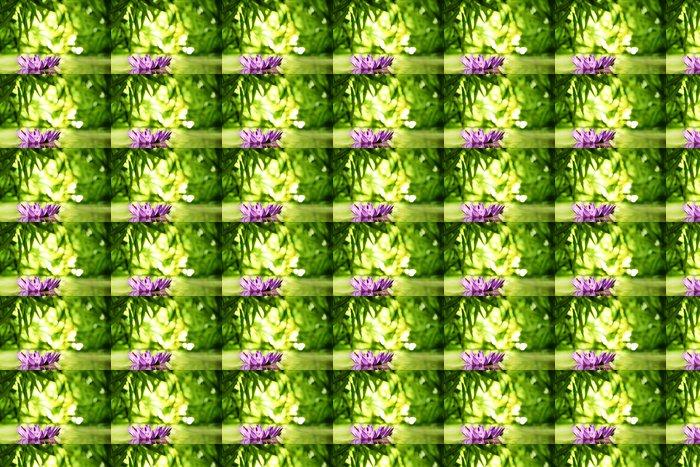 Vinylová Tapeta Lotosový květ plovoucí na vodě - Květiny
