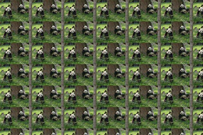 Vinylová Tapeta Obří pandy v poli - Témata