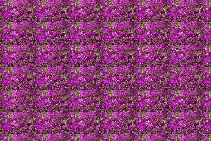 Vinylová Tapeta Azalea Bush po dešti - Květiny