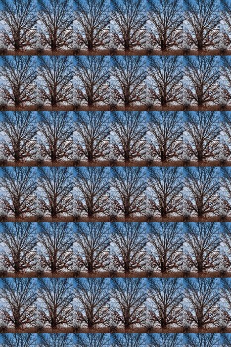Vinylová Tapeta Bare Oak - Roční období