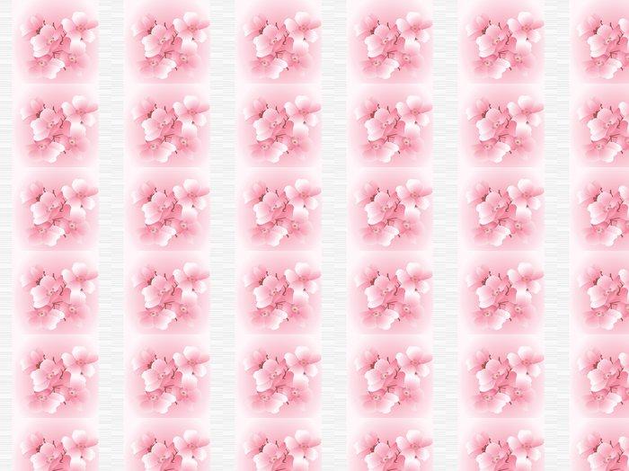 Vinylová Tapeta Třešňové květy na pruhované pozadí - Roční období
