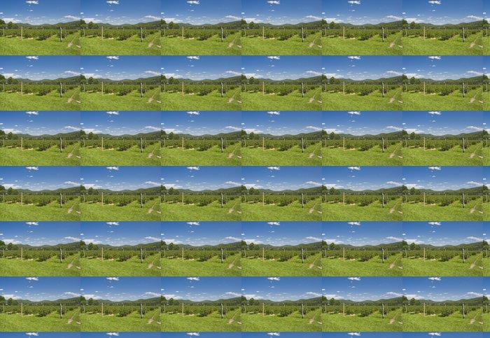 Vinylová Tapeta Borůvkové plantáže s horami v pozadí - Venkov