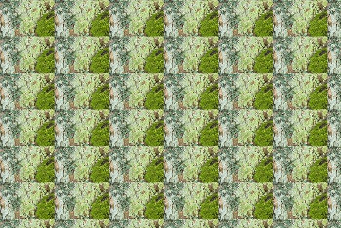 Vinylová Tapeta Horsechestnut Kůra stromu, listy břečťanu, Moss a lišejníků na pozadí - Přírodní krásy