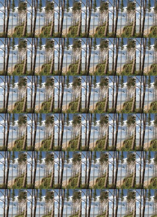 Vinylová Tapeta Mořské pobřeží - Voda