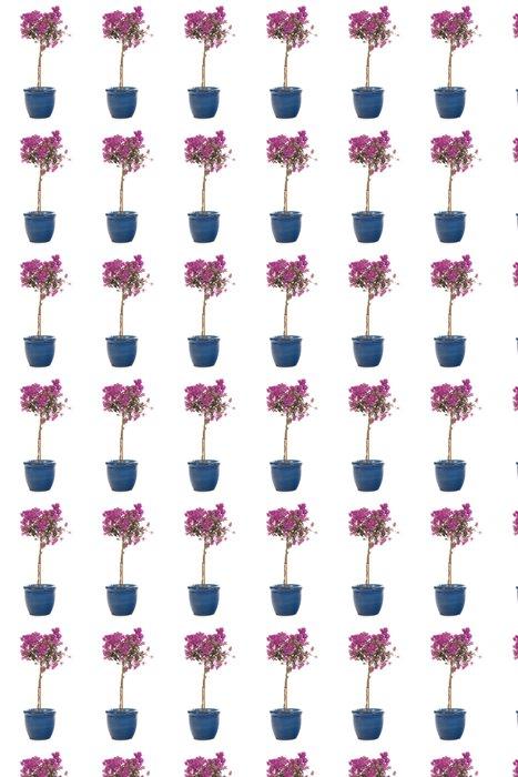 Vinylová Tapeta Růžová Bougainvillea - Květiny
