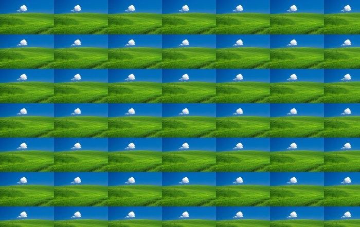 Vinylová Tapeta Green field - Nebe