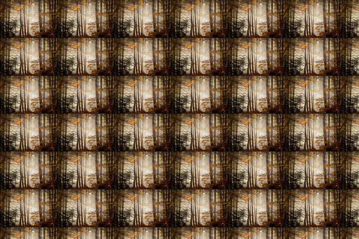 Vinylová Tapeta Krásné podzimní lesy krajiny - Roční období
