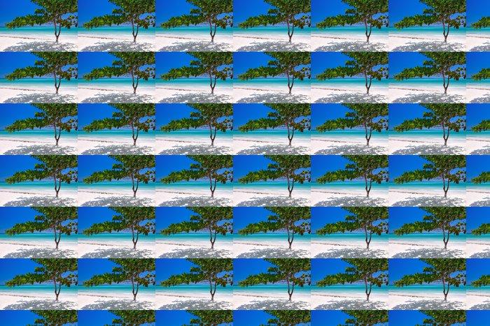 Vinylová Tapeta Zanzibar tropický strom na pláži - Afrika