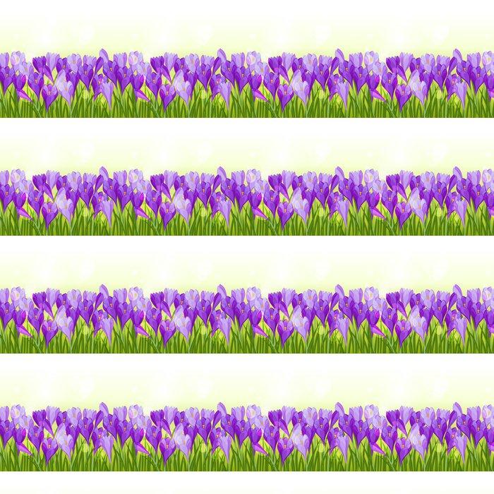 Vinylová Tapeta Jarní květiny krokus bezešvé vzor horizontální hranice. - Roční období