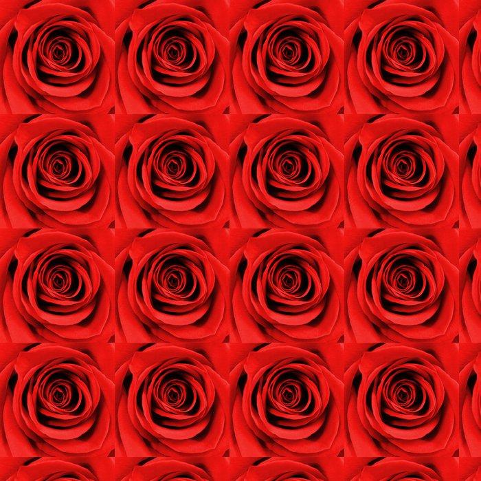 Vinylová Tapeta Zblízka krásné červené růže - Mezinárodní svátky