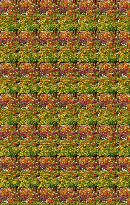 Vinylová Tapeta Barevné květinové záhony s barevnými máky - Domov a zahrada