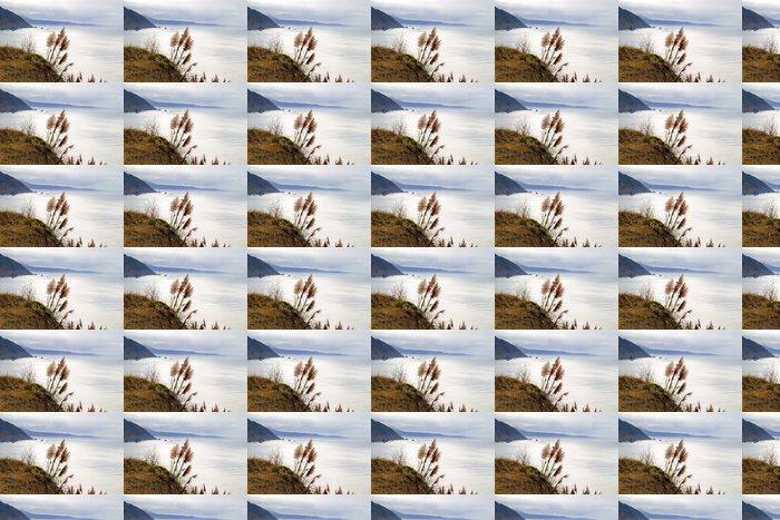 Vinylová Tapeta Okořeněnou chocholy - horizontální - Voda