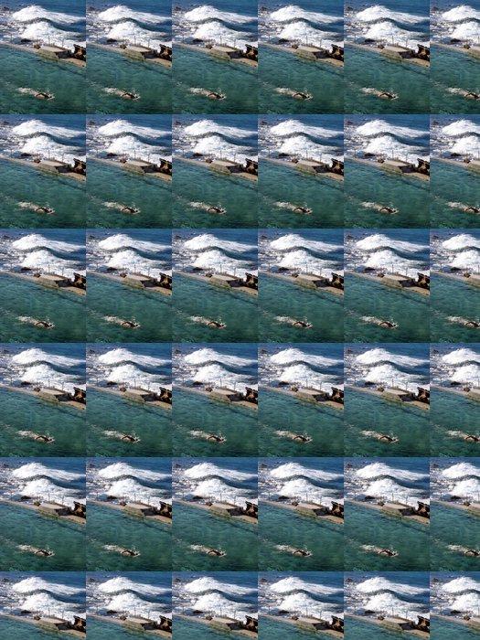 Vinylová Tapeta Plavání v bazénu Bronte oceánu - Individuální sporty