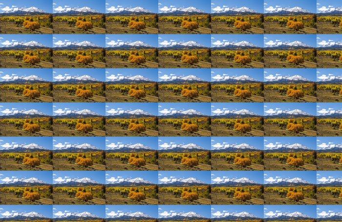 Vinylová Tapeta Barevné horské Colorado na podzim - Roční období