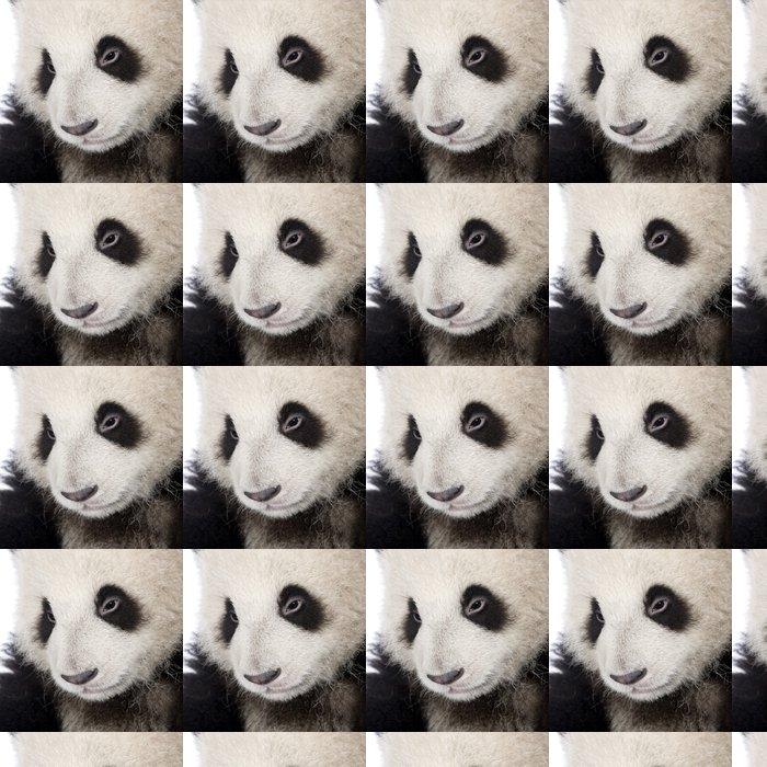 Vinylová Tapeta Giant Panda (6 měsíců) - Ailuropoda melanoleuca - Témata