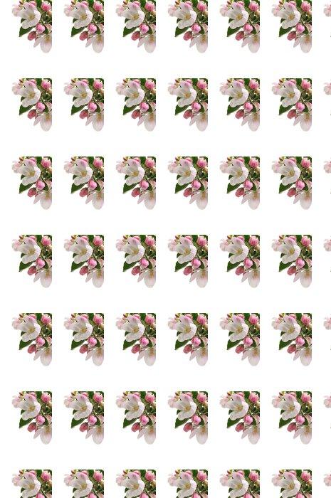 Vinylová Tapeta Apple Blossoms - Roční období