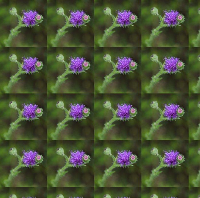 Vinylová Tapeta Řepík květina - Květiny