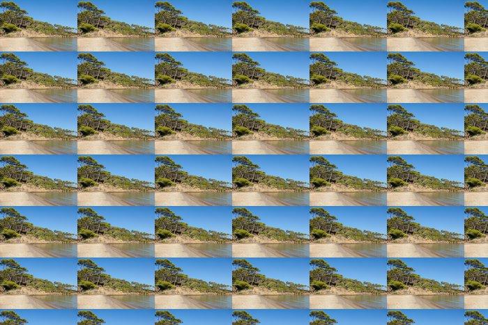 Vinylová Tapeta Pláž Notre Dame na ostrově Porquerolles ve Francii - Evropa