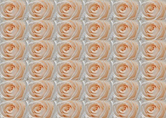 Vinylová Tapeta Zblízka bílé růže - Struktury