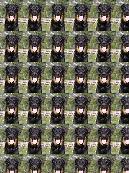Vinylová Tapeta Beauceron, francouzský pes - Savci