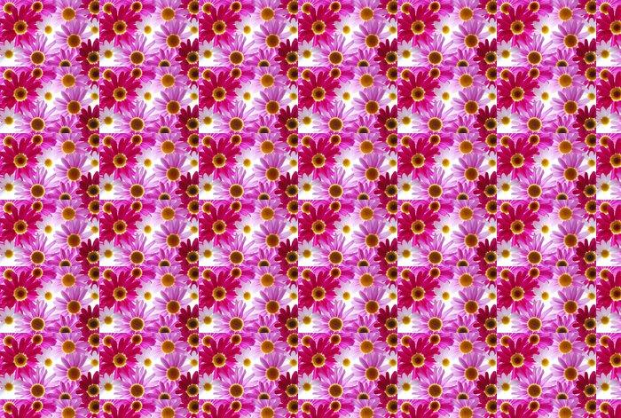 Vinylová Tapeta Červené a růžové marguerites - Květiny