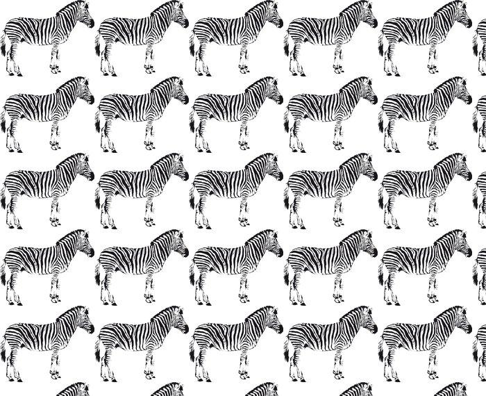 Vinylová Tapeta Zebra - Nálepka na stěny