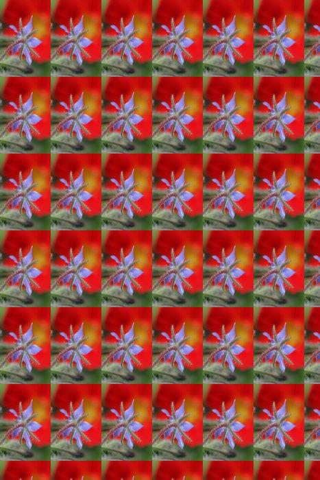 Vinylová Tapeta Květina detailní - Květiny