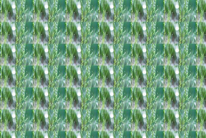 Vinylová Tapeta Dew Covered Grass - Roční období