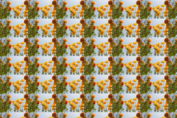 Vinylová Tapeta Asijský Ranunculus květiny - Květiny