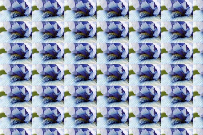 Vinylová Tapeta Iris květ makro - Květiny