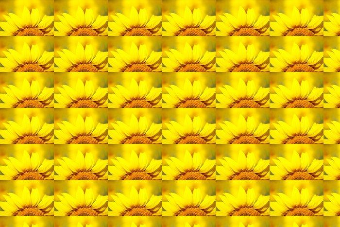 Vinylová Tapeta Krásné slunečnice v poli - Témata