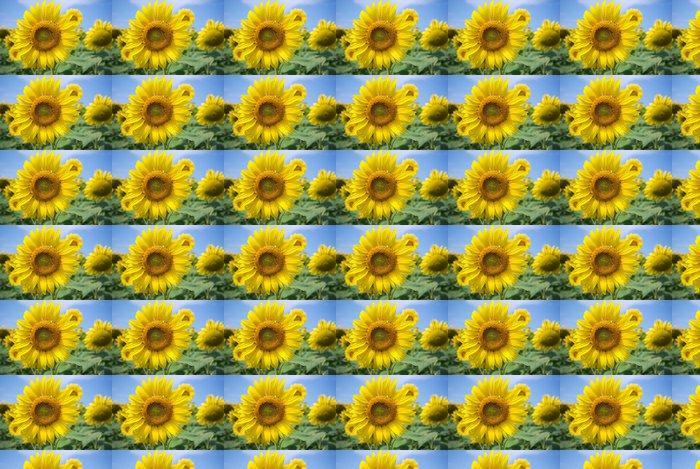 Vinylová Tapeta Sunflowers - Zemědělství