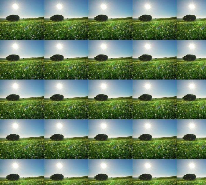 Vinylová Tapeta Jarní strom - Roční období