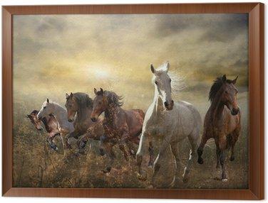 Ingelijst Canvas Kudde paarden galopperen vrij bij zonsondergang