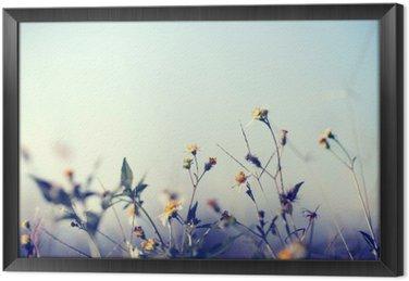 Ingelijst Canvas Uitstekende foto van de natuur achtergrond met wilde bloemen en planten