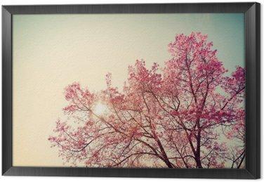 Ingelijst Canvas Vintage kersenbloesem - sakura bloem. natuur achtergrond (retro filter effect kleur)