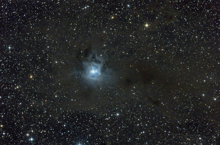 Iris Nebula, NGC 7023. Reflection nebula in Cepheus.