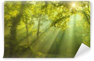 Taivaan metsää Itsestäänkiinnittyvä Valokuvatapetti
