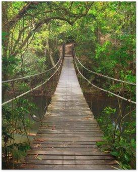 Silta viidakkoon, khao yai kansallispuisto, thaimaa Juliste