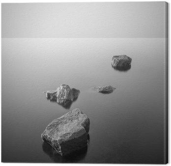 Minimalistinen sumuinen maisema. mustavalkoinen. Kangastuloste