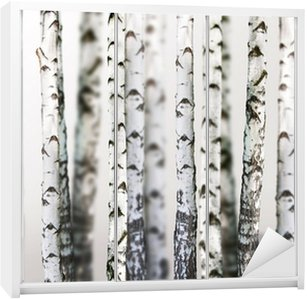 Kaststicker Natuurlijke achtergrond - berken - behang