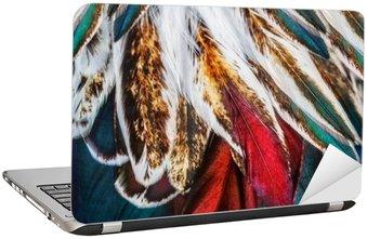 Laptop-Aufkleber Helle braune Feder Gruppe von einigen Vogel