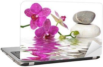 Einfach schöne Orchideen Laptop Sticker