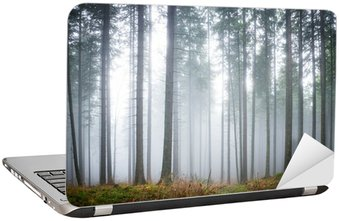Mysterious fog in the green forest Laptop Sticker