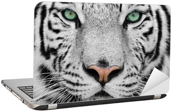 white tiger Laptop Sticker