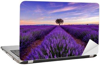Laptopdekor Träd i lavendel fält på soluppgången i Provence, Frankrike
