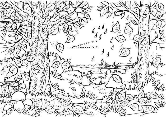 Pixerstick na Wszystko Las jesienią - Lasy