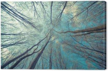 Leinwandbild Bäume Web-Hintergrund